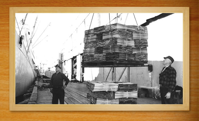 Loading cedar product at the ship dock.